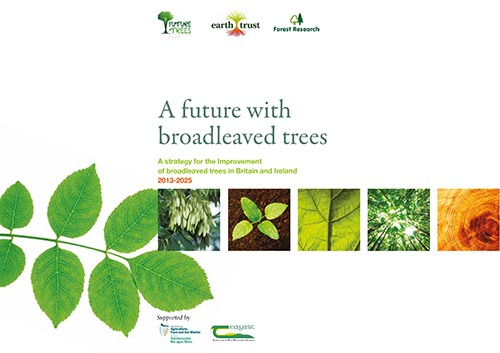 NTIS A future with broadleaved trees